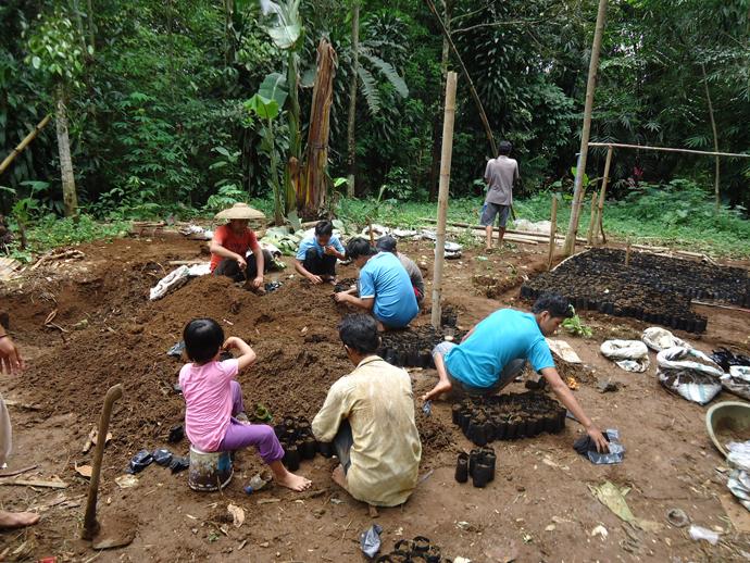 住民グループによる苗床の準備(インドネシア)