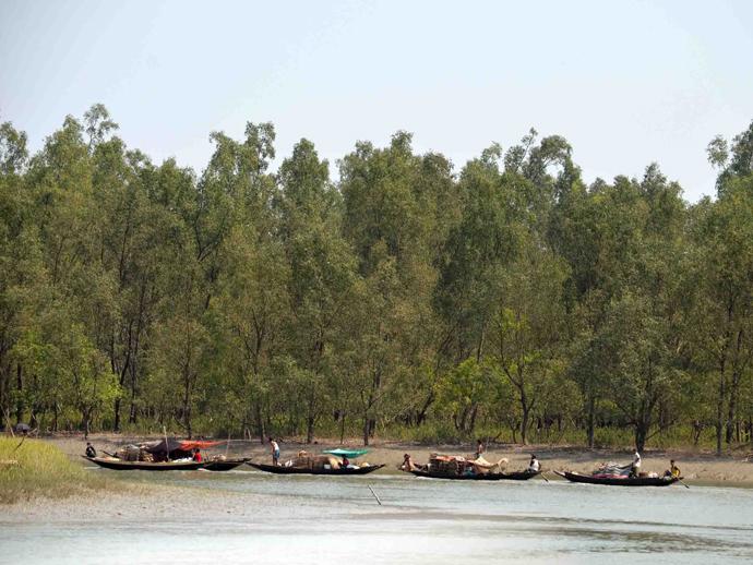 自然と共生した暮らしが求められる農村の様子(バングラデシュ)