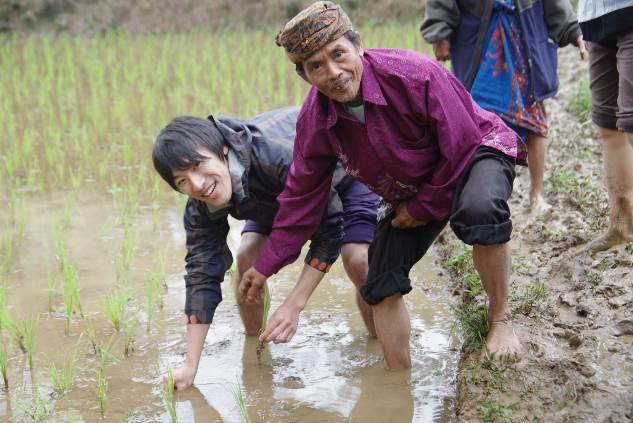 エコツアー田植え体験(インドネシア)