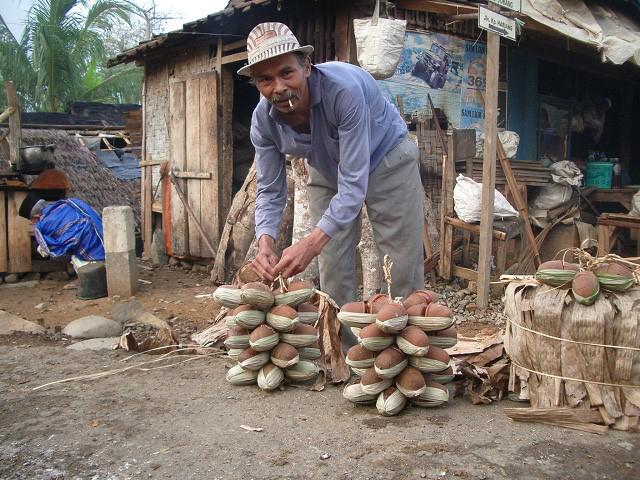 ヤシ砂糖(インドネシア)