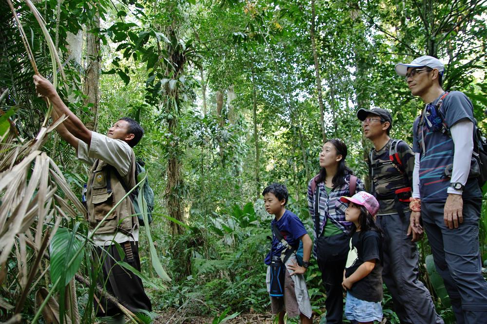 原生林トレッキングで活躍する住民インタープリター