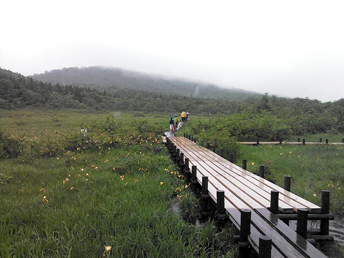 原生花園でトレッキング