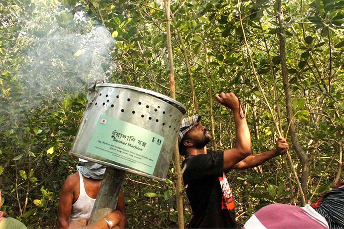 開発された燻煙器を使用して蜂を追い払う天然蜂蜜収集人