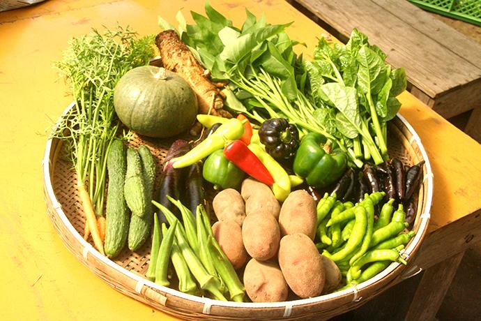 年間80種類の米・野菜を生産しています。