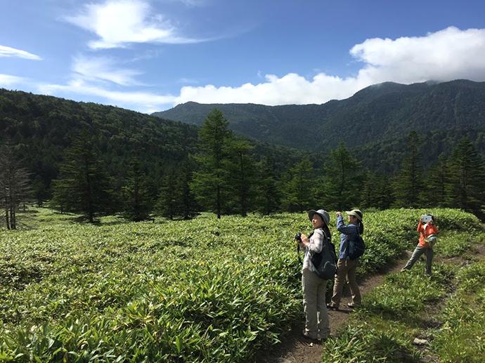 自然エリアへのエコツアーでは少人数が原則
