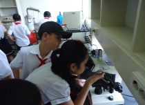 School excursion, Hai Phong City