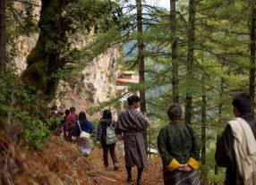 Nature hike at Sheykhadrag